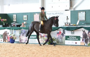 RoR-Horse-of-the-Year-Liverpool-at-RoR-Nat-Champ-show
