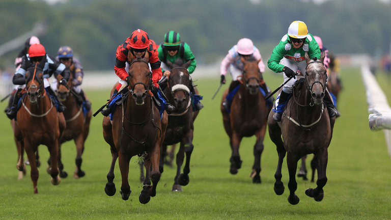 snoano-horse-racing-york_3482104